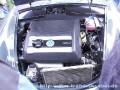 zw2001-11.jpg